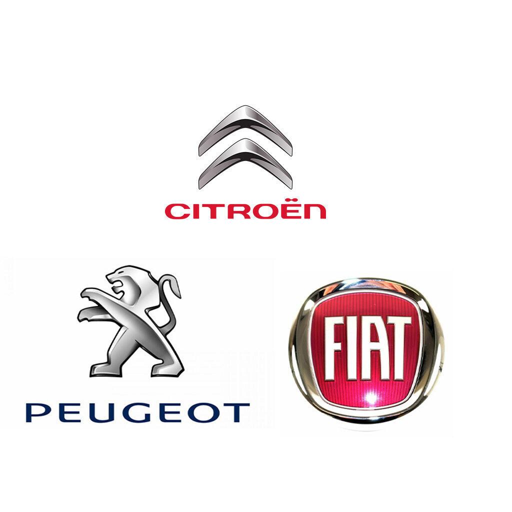 logo Fiat peugeot citroen